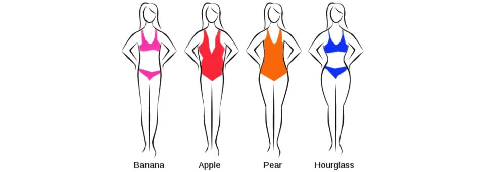身臀型的分類